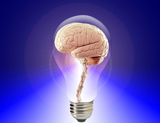 top 3 food for brain and memory boost